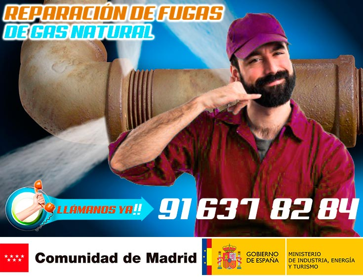 Reparación de fugas de gas natural en Madrid